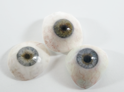 Image of multiple artificial eyes painted by Bev
