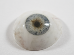 Image of a blue artificial eye painted by Bev
